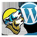douglas web designs douglaswebdesigns.com 7343520485